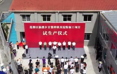 浙江丽水红薯竞博job官网厂